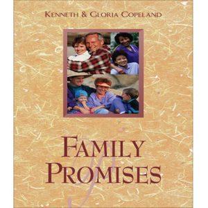Family Promises - Bk